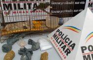 PM cumpre mandado, apreende drogas e detém suspeito em Ipanema